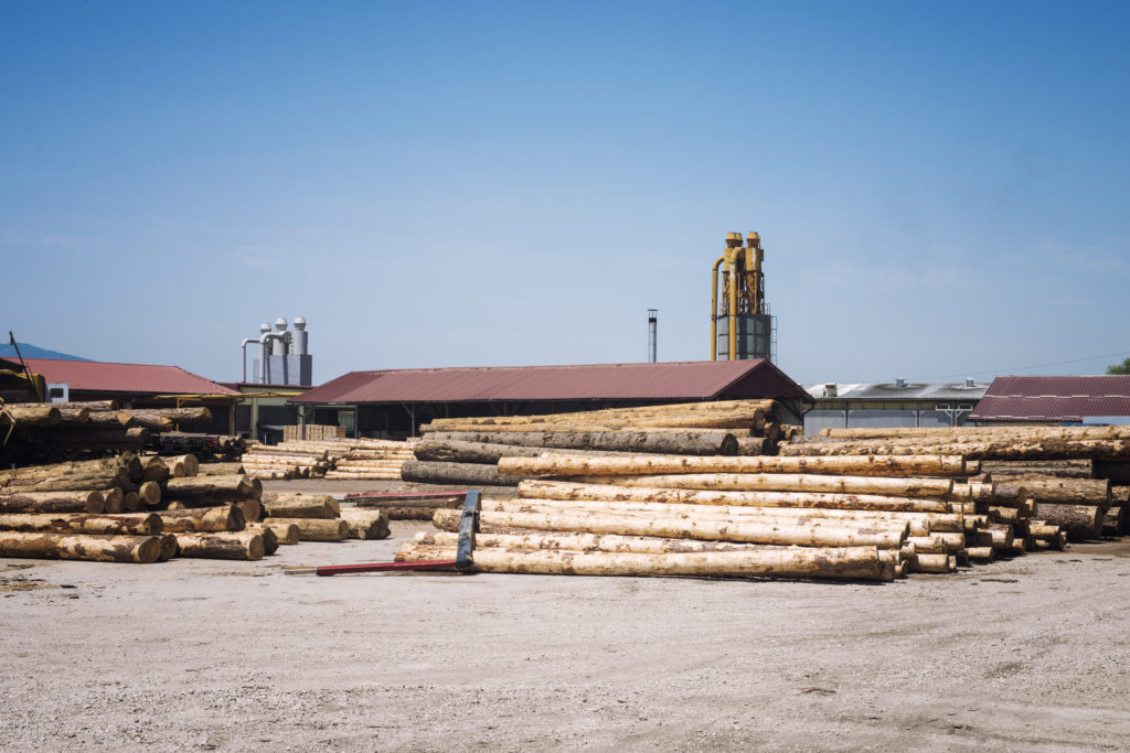 sawmill factory lumber planks production 1024x683